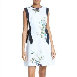 Ted Baker Sipnela A-Line Dress - like new